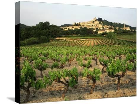 View of Provence Vineyard, Luberon, Bonnieux, Vaucluse, France-David Barnes-Stretched Canvas Print