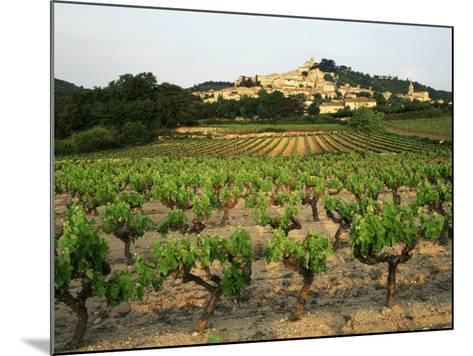 View of Provence Vineyard, Luberon, Bonnieux, Vaucluse, France-David Barnes-Mounted Photographic Print