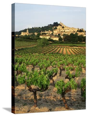 View of Provence Vineyard, Luberon, Bonnieux, Vaucluse, France-David Barnes-Stretched Canvas Print