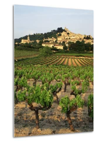 View of Provence Vineyard, Luberon, Bonnieux, Vaucluse, France-David Barnes-Metal Print