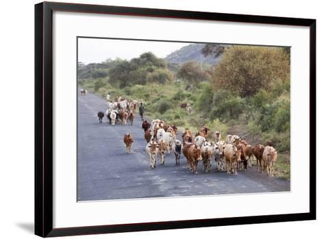Herd of Farm Cattle on Country Road in Rift Valley, Ethiopia-Martin Zwick-Framed Art Print
