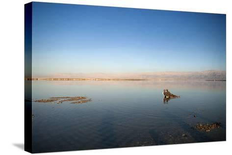 Couple in Healing Mud, Dead Sea, Israel-David Noyes-Stretched Canvas Print
