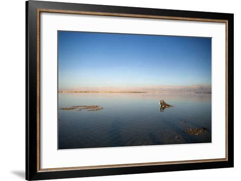 Couple in Healing Mud, Dead Sea, Israel-David Noyes-Framed Art Print