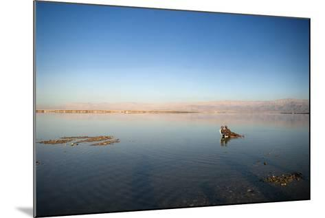 Couple in Healing Mud, Dead Sea, Israel-David Noyes-Mounted Photographic Print