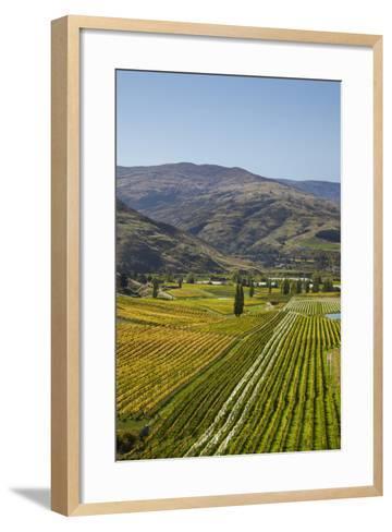 Felton Road Vineyard, Autumn, Bannockburn, Central Otago, South Island, New Zealand-David Wall-Framed Art Print