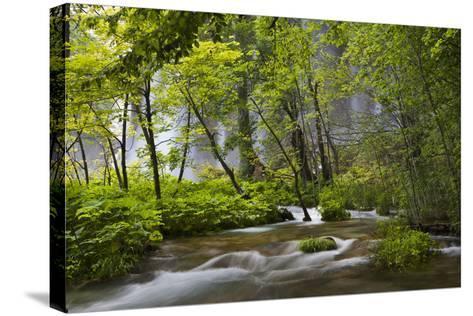 Upper Lakes, Waterfall Galovacki Slap, Plitvice Lakes, Plitvicka Jezera, Croatia-Martin Zwick-Stretched Canvas Print