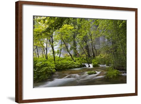 Upper Lakes, Waterfall Galovacki Slap, Plitvice Lakes, Plitvicka Jezera, Croatia-Martin Zwick-Framed Art Print