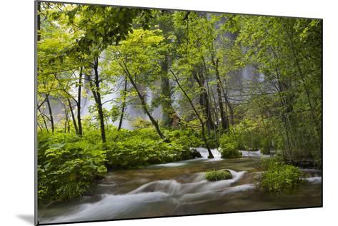 Upper Lakes, Waterfall Galovacki Slap, Plitvice Lakes, Plitvicka Jezera, Croatia-Martin Zwick-Mounted Photographic Print