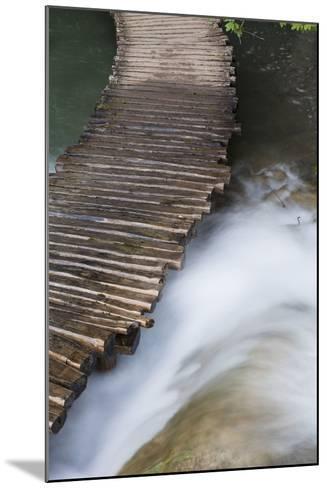 Typical Plank Path, Plitvice Lakes, Plitvicka Jezera, Croatia-Martin Zwick-Mounted Photographic Print