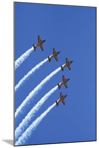 The Red Checkers Aerobatic Display Team with CT-4B Airtrainers-David Wall-Mounted Photographic Print