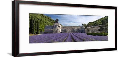 Rows of Lavender, Abbaye De Senanque Near Gordes, Luberon, Provence, France-Brian Jannsen-Framed Art Print