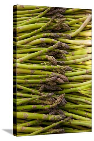 Scotts Asparagus Farm, Marlborough, South Island, New Zealand-Douglas Peebles-Stretched Canvas Print