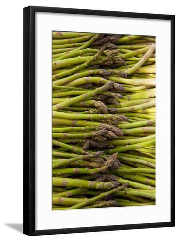 Scotts Asparagus Farm, Marlborough, South Island, New Zealand-Douglas Peebles-Framed Art Print