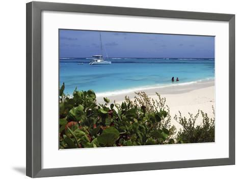 Swimming the Waters of Prickly Pear Island with Festiva Sailing Vacations-Lynn Seldon-Framed Art Print