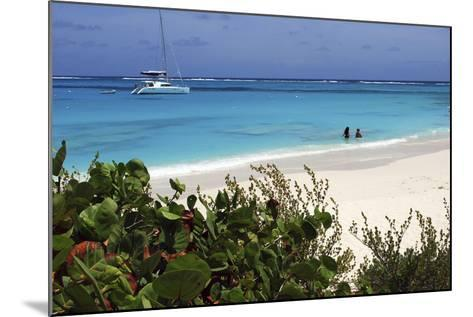 Swimming the Waters of Prickly Pear Island with Festiva Sailing Vacations-Lynn Seldon-Mounted Photographic Print
