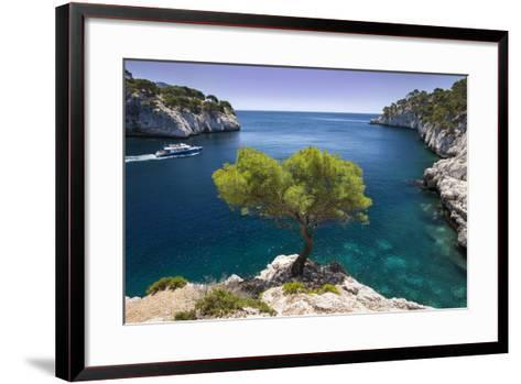 Tour Boat, Lone Pine Tree in the Calanques Near Cassis, Provence, France-Brian Jannsen-Framed Art Print
