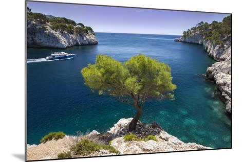 Tour Boat, Lone Pine Tree in the Calanques Near Cassis, Provence, France-Brian Jannsen-Mounted Photographic Print