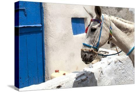 Donkey Waits at Cobbled Stairway, Santorini, Greece-David Noyes-Stretched Canvas Print
