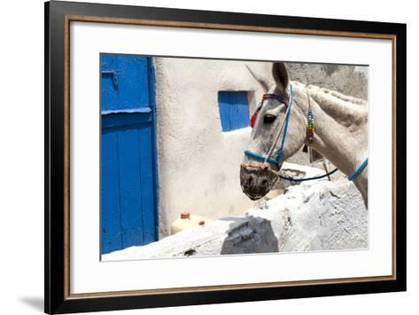 Donkey Waits at Cobbled Stairway, Santorini, Greece-David Noyes-Framed Art Print