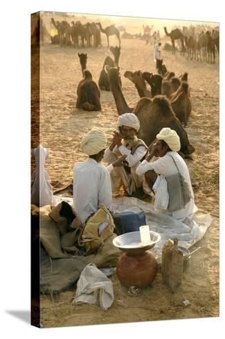 Pastoral Nomads at Annual Pushkar Camel Fair, Rajasthan, Raika, India-David Noyes-Stretched Canvas Print