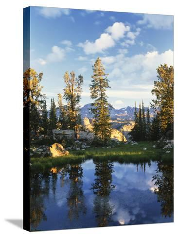 Landscape with Reflection of Lake, Wyoming, USA-Scott T^ Smith-Stretched Canvas Print