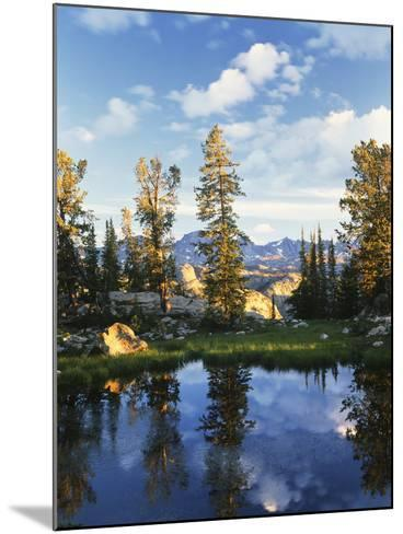Landscape with Reflection of Lake, Wyoming, USA-Scott T^ Smith-Mounted Photographic Print