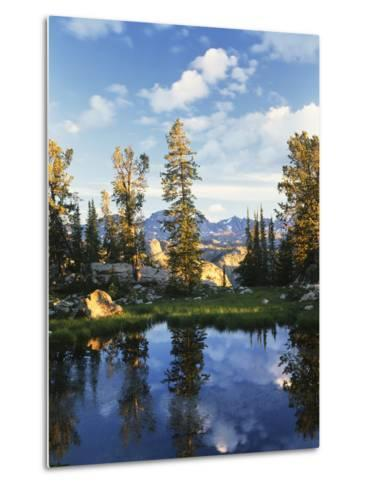 Landscape with Reflection of Lake, Wyoming, USA-Scott T^ Smith-Metal Print