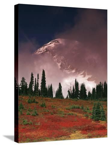 View of Mt. Rainier National Park, Washington, USA-Stuart Westmorland-Stretched Canvas Print