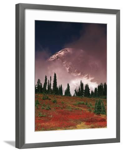 View of Mt. Rainier National Park, Washington, USA-Stuart Westmorland-Framed Art Print
