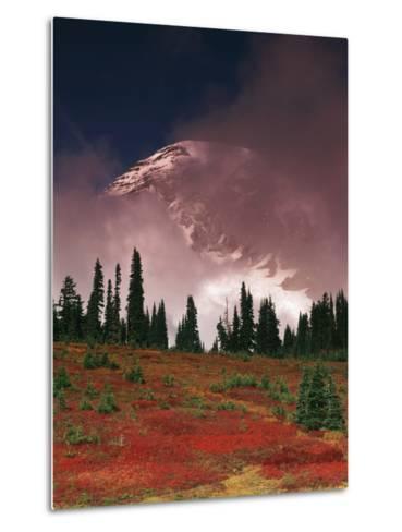 View of Mt. Rainier National Park, Washington, USA-Stuart Westmorland-Metal Print