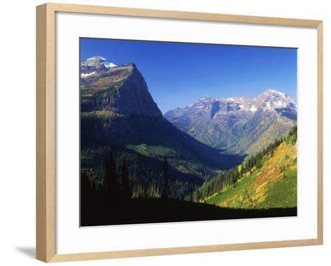 Autumn Near Logan Pass, Glacier National Park, Montana, USA-Adam Jones-Framed Art Print