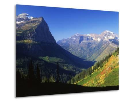 Autumn Near Logan Pass, Glacier National Park, Montana, USA-Adam Jones-Metal Print