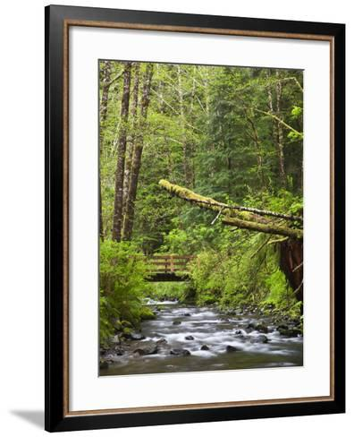 Short Sand Creek, Oswald West State Park, Oregon, USA-Jamie & Judy Wild-Framed Art Print