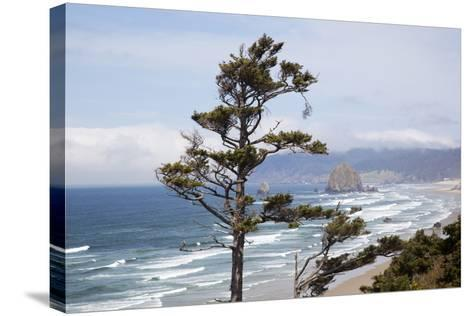 View of Haystack Rock and Cannon Beach, from Highway 101, Oregon, USA-Jamie & Judy Wild-Stretched Canvas Print
