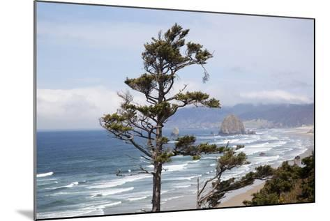 View of Haystack Rock and Cannon Beach, from Highway 101, Oregon, USA-Jamie & Judy Wild-Mounted Photographic Print