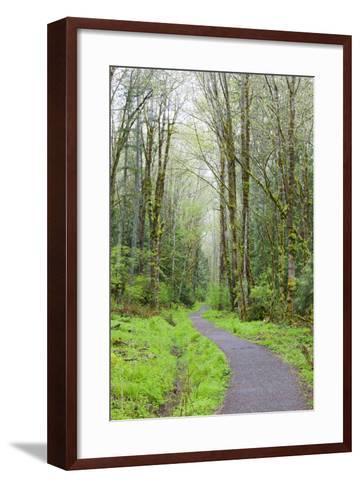 Forest Trail, Tiger Mountain State Forest, Washington, USA-Jamie & Judy Wild-Framed Art Print