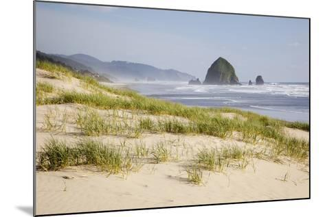 Cannon Beach and Haystack Rock, Oregon, USA-Jamie & Judy Wild-Mounted Photographic Print