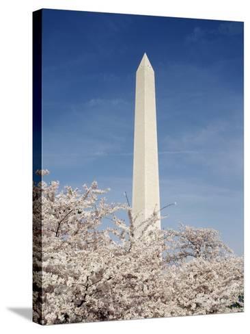 View of Washington Monument, Washington DC, USA-Michele Molinari-Stretched Canvas Print