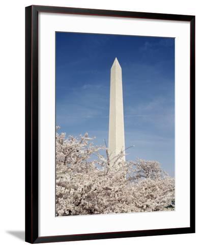 View of Washington Monument, Washington DC, USA-Michele Molinari-Framed Art Print