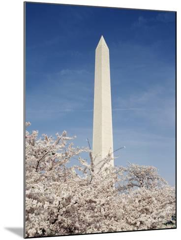 View of Washington Monument, Washington DC, USA-Michele Molinari-Mounted Photographic Print