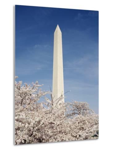 View of Washington Monument, Washington DC, USA-Michele Molinari-Metal Print