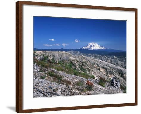 Mt Adams from Windy Ridge, Mt St Helens Volcanic National Monument, Washington, USA-Kent Foster-Framed Art Print