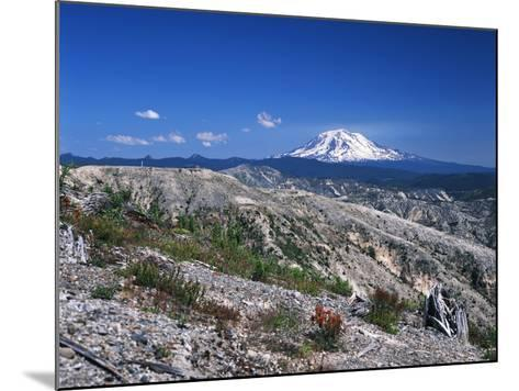 Mt Adams from Windy Ridge, Mt St Helens Volcanic National Monument, Washington, USA-Kent Foster-Mounted Photographic Print