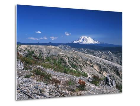 Mt Adams from Windy Ridge, Mt St Helens Volcanic National Monument, Washington, USA-Kent Foster-Metal Print