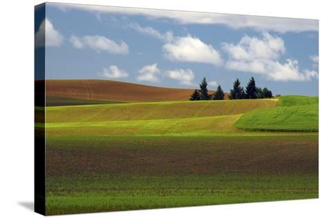 Agriculture, Palouse View, Whitman County, Washington, USA-Michel Hersen-Stretched Canvas Print