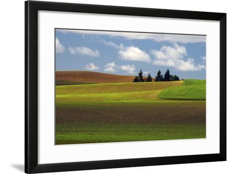 Agriculture, Palouse View, Whitman County, Washington, USA-Michel Hersen-Framed Art Print