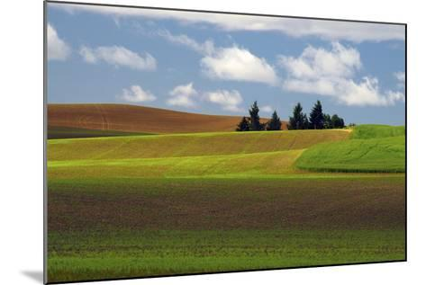 Agriculture, Palouse View, Whitman County, Washington, USA-Michel Hersen-Mounted Photographic Print