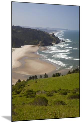 View of Beach, Cascade Head, Oregon, USA-Jamie & Judy Wild-Mounted Photographic Print