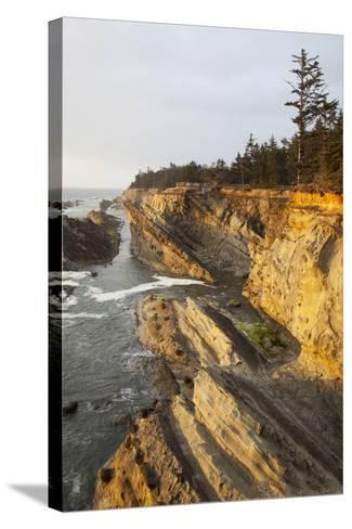 Sandstone Cliffs and Coastline, Shore Acres State Park, Oregon, USA-Jamie & Judy Wild-Stretched Canvas Print