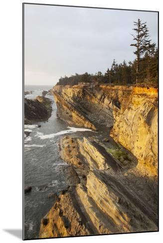 Sandstone Cliffs and Coastline, Shore Acres State Park, Oregon, USA-Jamie & Judy Wild-Mounted Photographic Print
